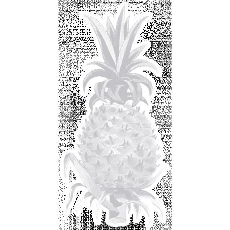 Sugar Sweet Pineapple 02