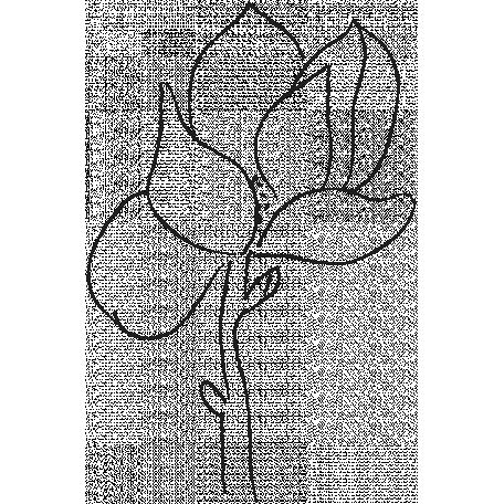 Drawn Flowers Templates Sketch Magnolia Graphic By Melo Vrijhof Pixel Scrapper Digital Scrapbooking