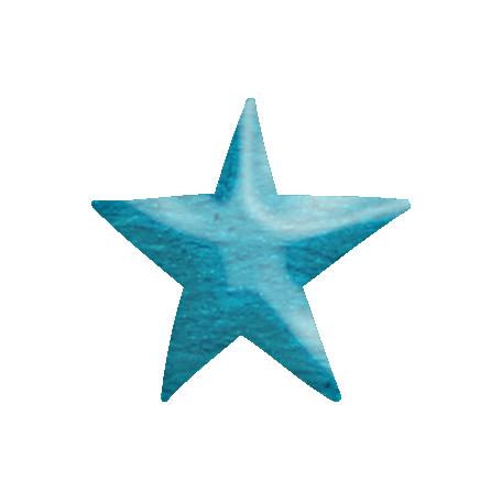 Look, A Book! - Blue Star