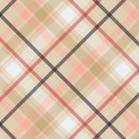 food-day-plaid-paper-02-graphic-red-yellow-pink-white-black-tan Online Job Form After Th on amazon home, freelance writing, data entry, searches don't work, application complete, part-time data entry,