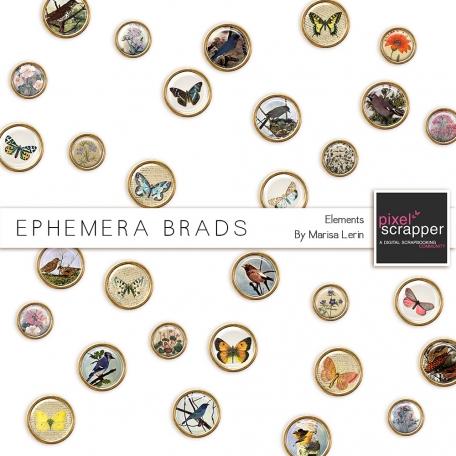 Ephemera Brads
