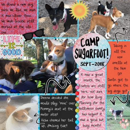 Camp Sugrfoot Monthly Sept 18