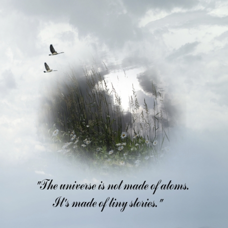 """""""The universe is not made of atoms. It's made of tiny stories."""" If I could Fly."""