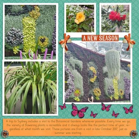 Sydney Botanical Gardens