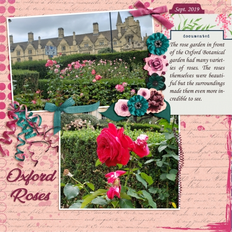 Oxford Roses