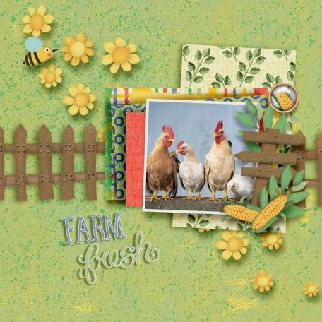 Barnyard Buddies - farm fresh