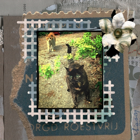 Mixed Media with Margaret's cats