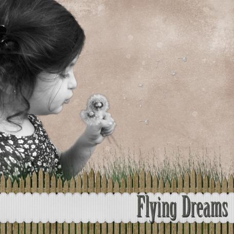Flying Dreams