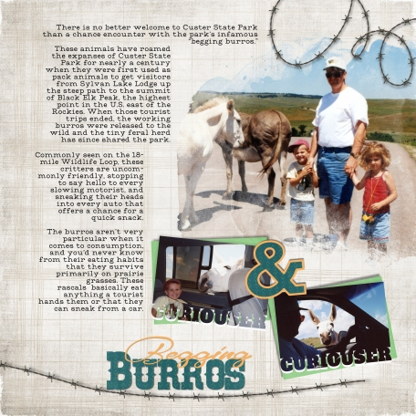 South Dakota Begging Burros