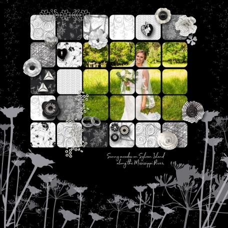 Sunny Meadow Bride