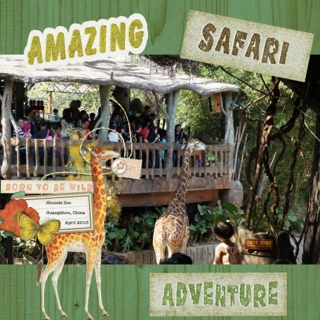 Giraffe Safari