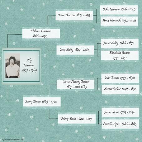 Grandma Lily's Family tree
