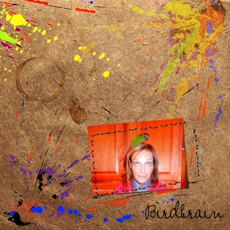 challenge paint feb 2013