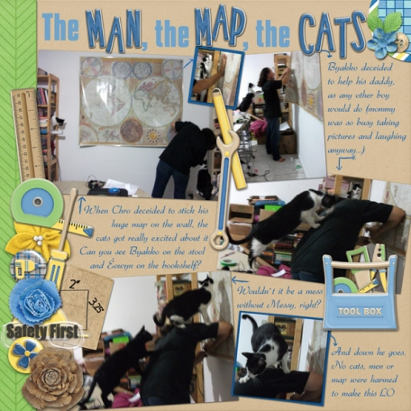 The Man, the Map, the Cats