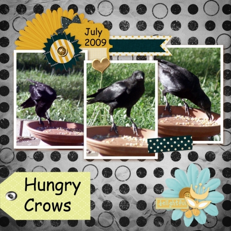 Hungry Crows
