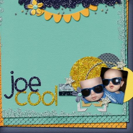 Joe Cool