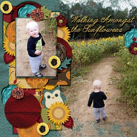 Walking Amongst the Sunflowers
