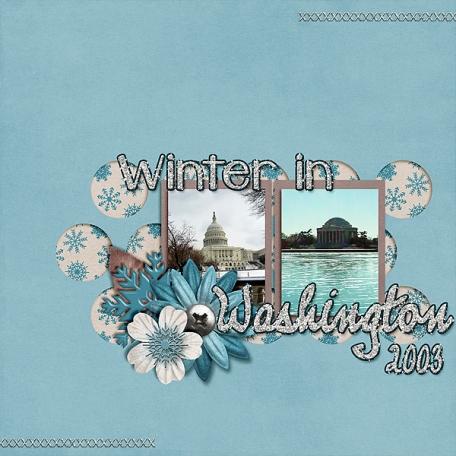 Winter in Washington