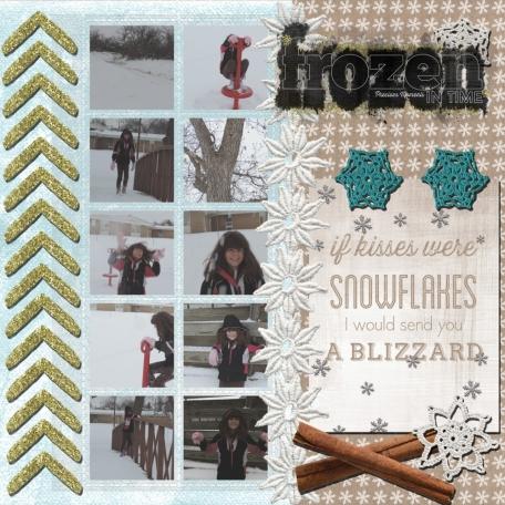 Winter Storm 2014 (1)