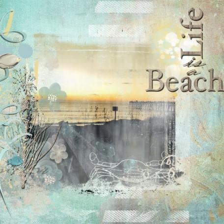 Seashore Dreams