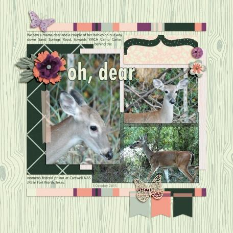 Family Album 2015: oh, dear