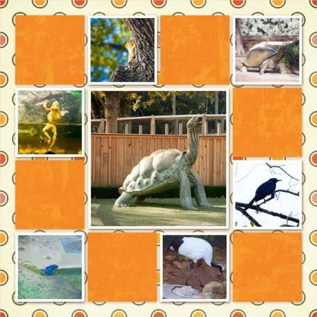 Dallas Zoo/Tina's 38th Birthday Album: Page 12