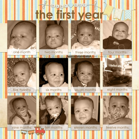 Ashton's Baby Book: The First Year