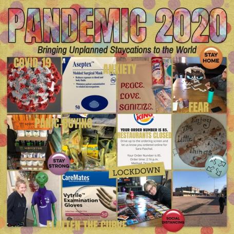 Pandemic 2020 Covid-19