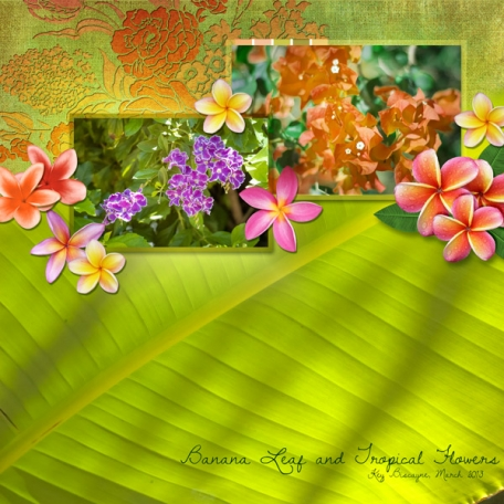 Banana Leaf and Tropical Flowers