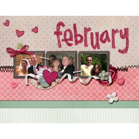 2013 Grammy Calendar - February
