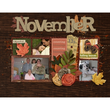 2013 Grammy Calendar - November