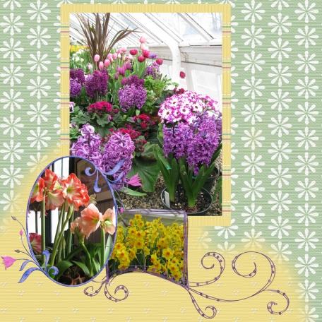 Mount Holyoke Flower Show 01