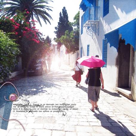 Explore Tunisia