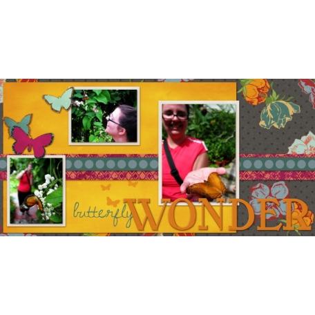 Butterfly Wonder