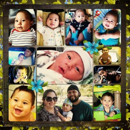 Logan's First Year