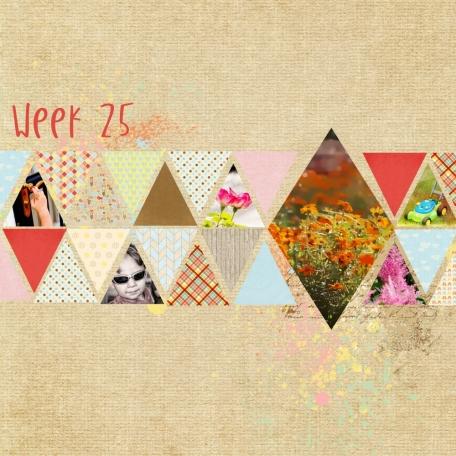 Project 52 - 2014 - week 25