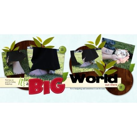 It's a big world
