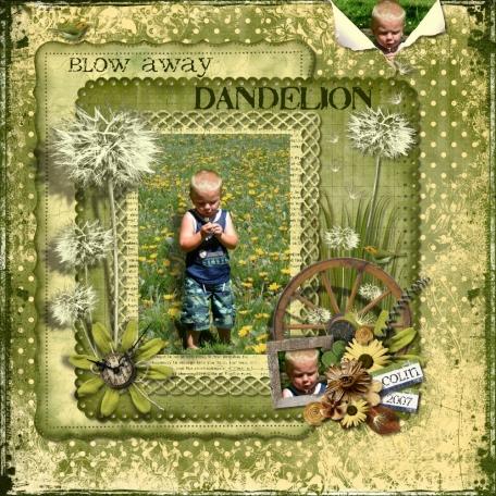 Blow Away Dandelion