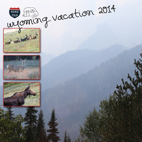 Wyo vacation