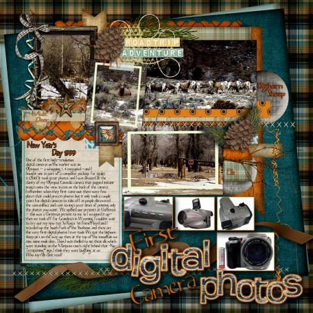 My first digital camera (and photos)