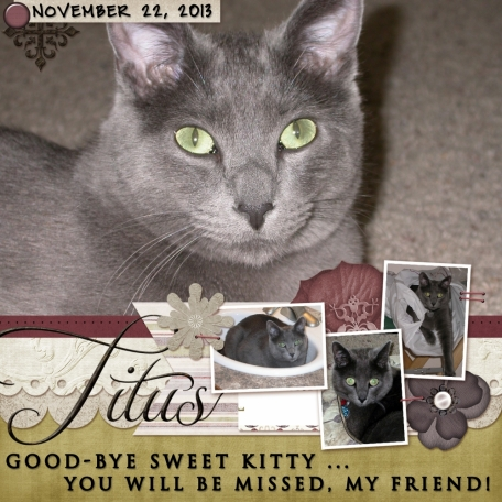 Good-bye Sweet Kitty