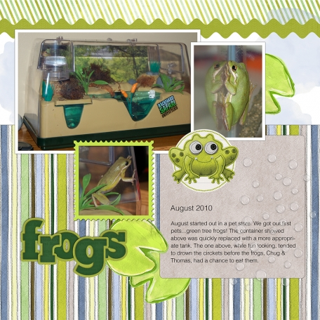 August 2010 Frogs