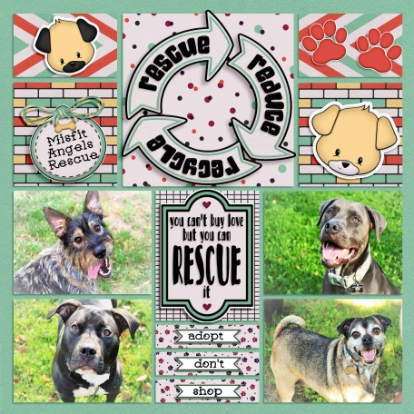 You Can't Buy Love But You Can Rescue It - Misfit Angels Rescue