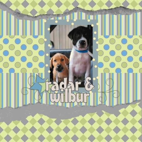Radar & Wilbur