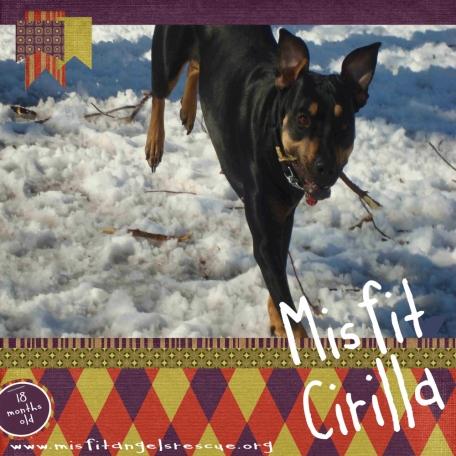 Misfit Cirilla