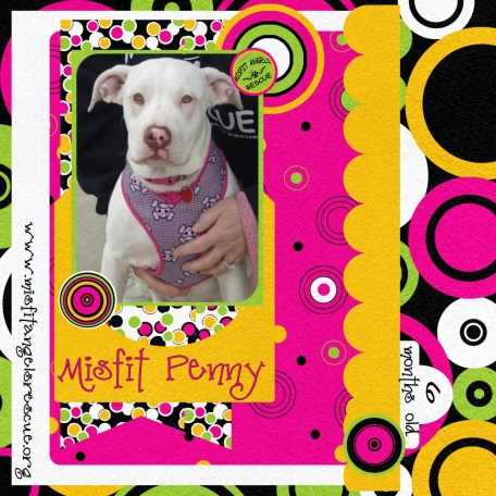 Misfit Penny