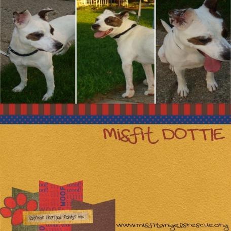 Misfit Dottie!