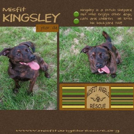 Misfit Kingsley!