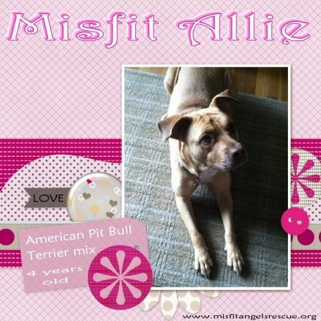 Misfit Allie