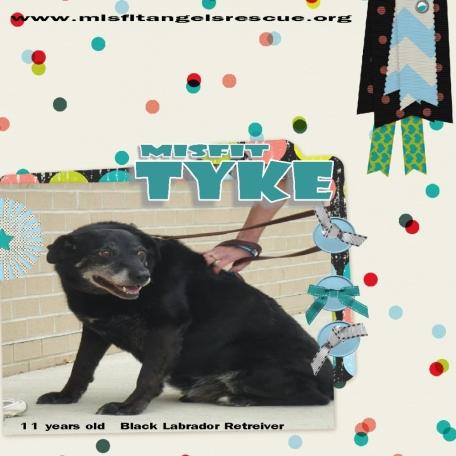 Misfit Tyke!